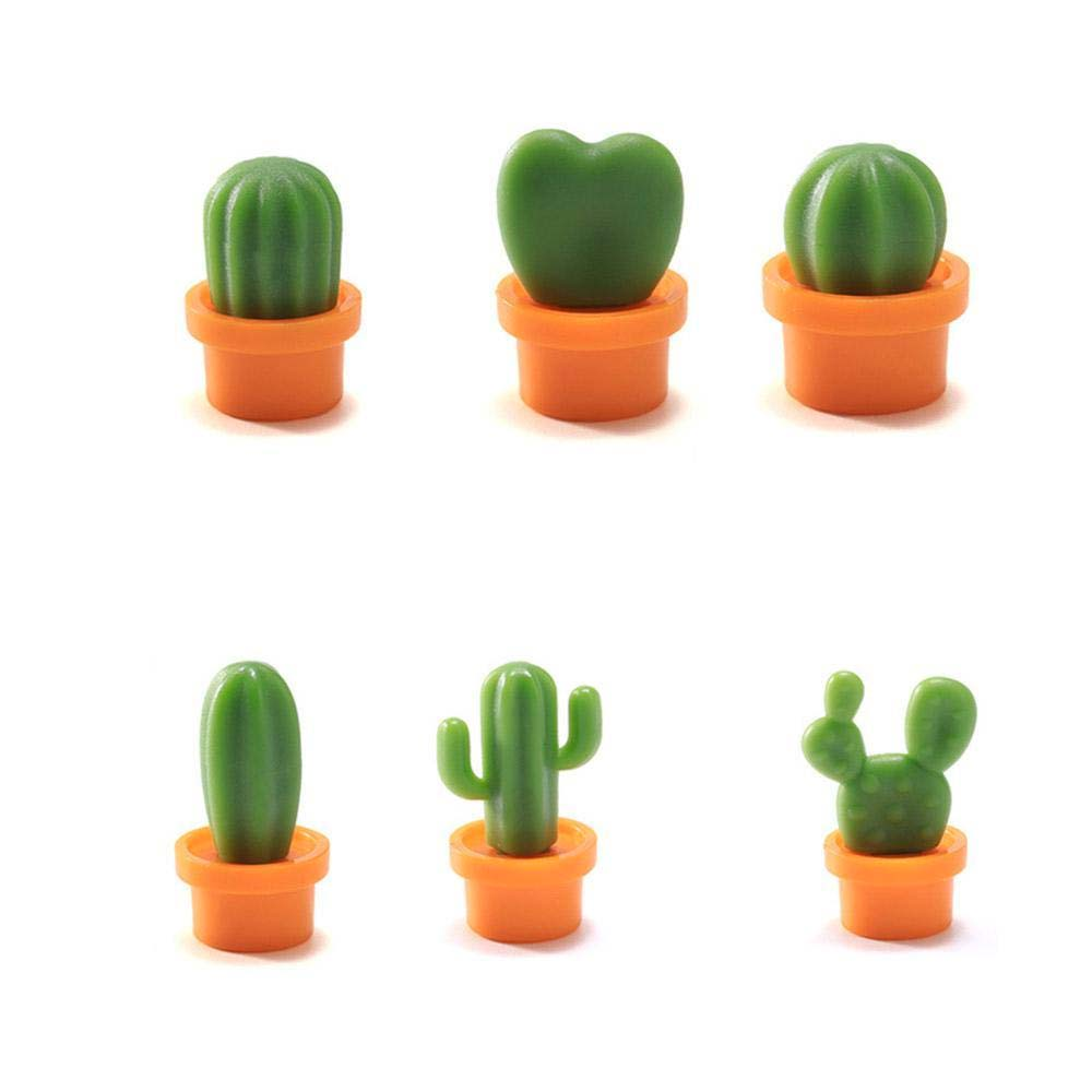 Cacnet - 6 Cactus Magnets