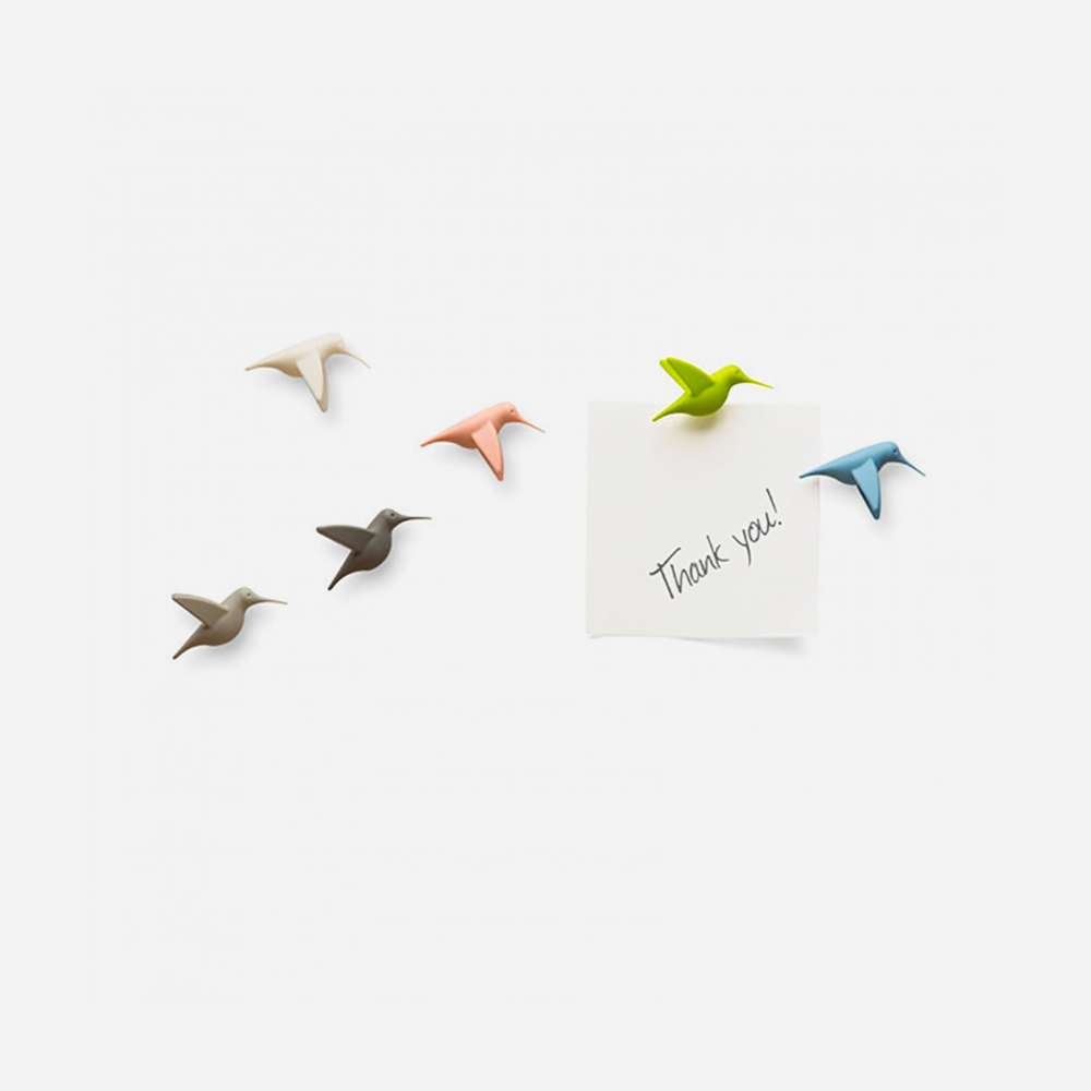 Hummingbird's Message Pastel - 6 Magnets