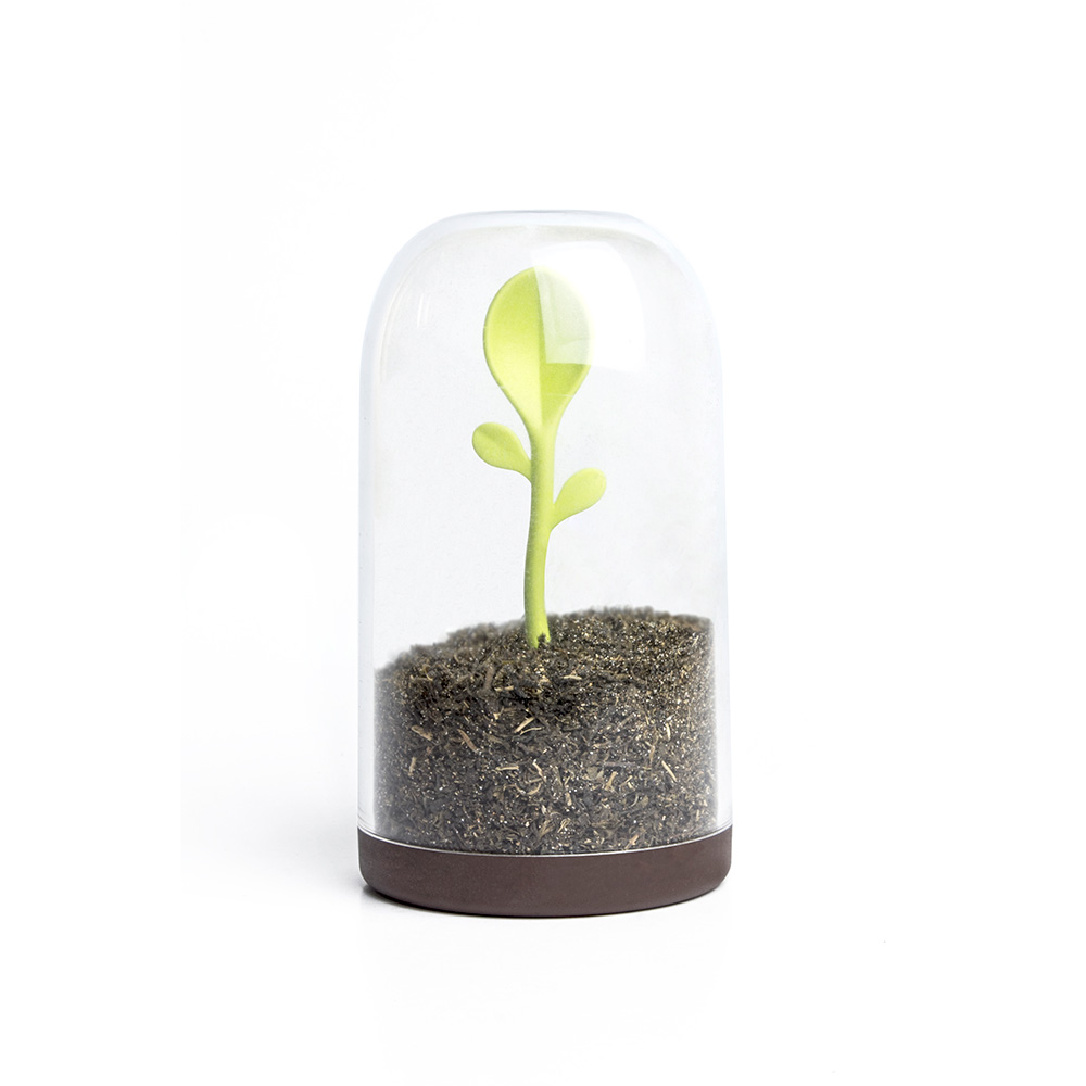 Sprout Jar - Container and Spoon