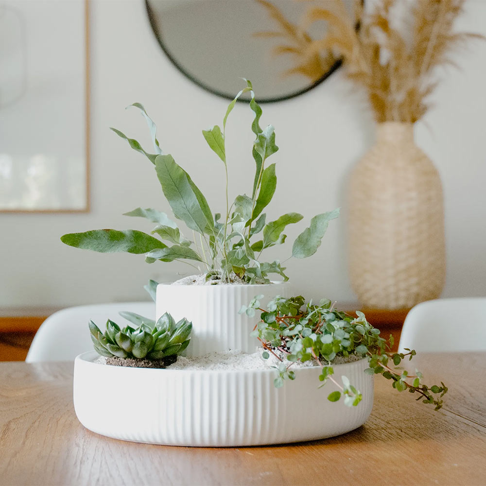 Fountain Planter & Organizer