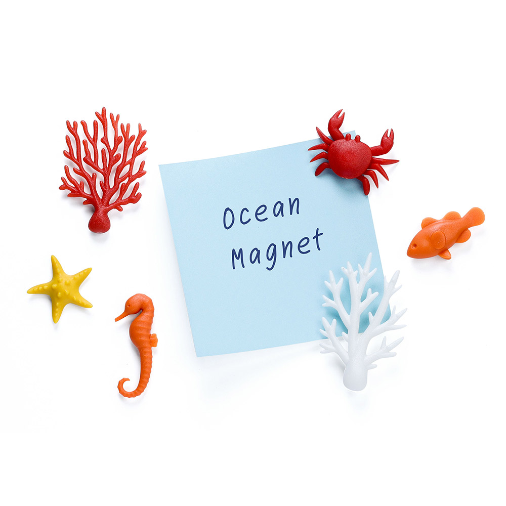 Ocean Ecology - Magnets