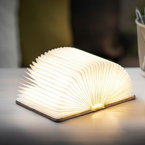 Mini-Coffee-Brown-Smart-Book-Light4